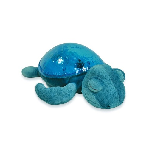 Tortue tranquille aqua - Cloud B