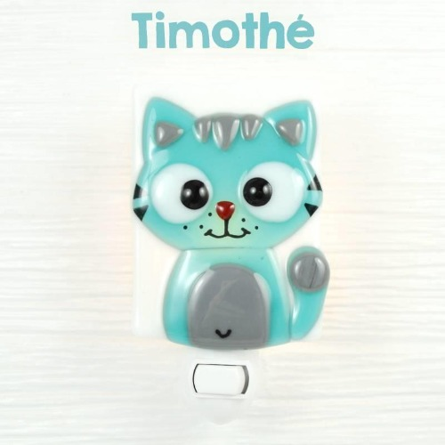 Chat - Timothé